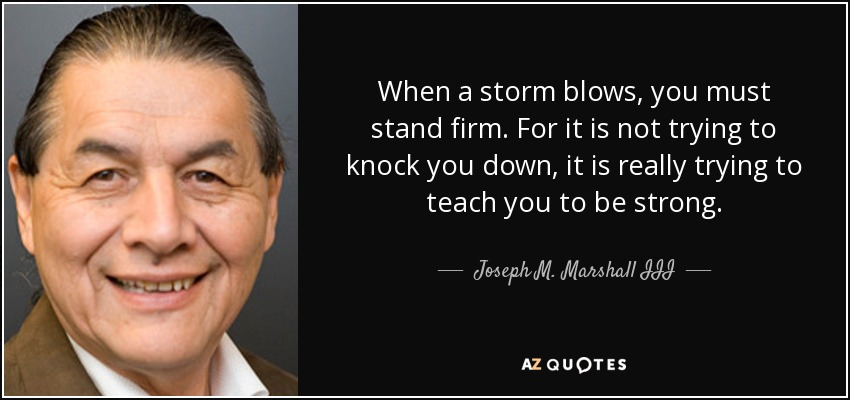 When a storm blows, you must stand firm. For it is not trying to knock you down, it is really trying to teach you to be strong. - Joseph M. Marshall III