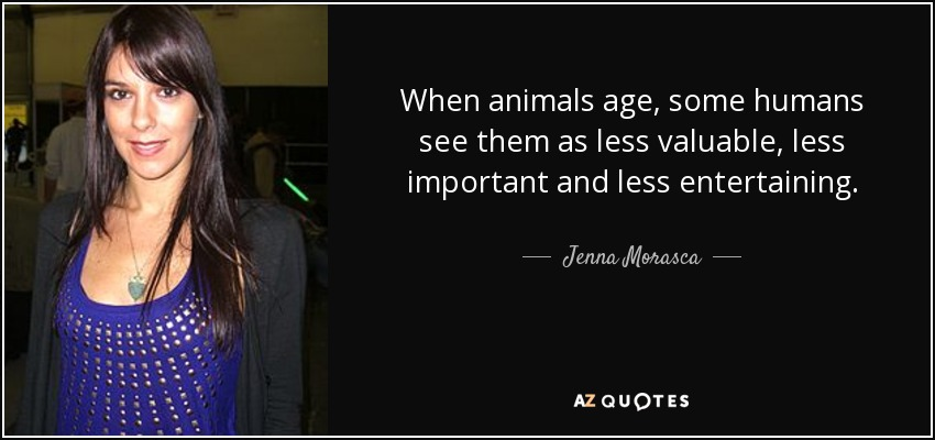 When animals age, some humans see them as less valuable, less important and less entertaining. - Jenna Morasca