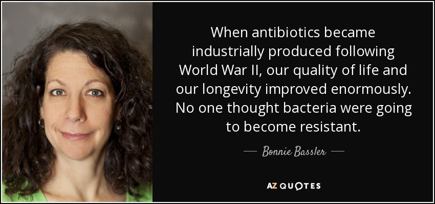 When antibiotics became industrially produced following World War II, our quality of life and our longevity improved enormously. No one thought bacteria were going to become resistant. - Bonnie Bassler