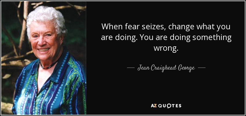 When fear seizes, change what you are doing. You are doing something wrong. - Jean Craighead George
