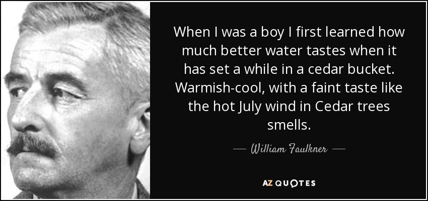 When I was a boy I first learned how much better water tastes when it has set a while in a cedar bucket. Warmish-cool, with a faint taste like the hot July wind in Cedar trees smells. - William Faulkner