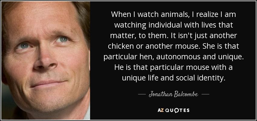 When I watch animals, I realize I am watching individual with lives that matter, to them. It isn't just another chicken or another mouse. She is that particular hen, autonomous and unique. He is that particular mouse with a unique life and social identity. - Jonathan Balcombe