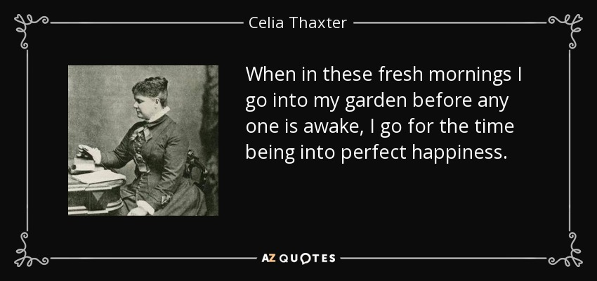 When in these fresh mornings I go into my garden before any one is awake, I go for the time being into perfect happiness. - Celia Thaxter