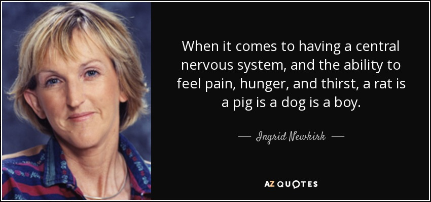 When it comes to having a central nervous system, and the ability to feel pain, hunger, and thirst, a rat is a pig is a dog is a boy. - Ingrid Newkirk