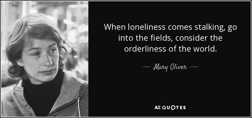 When loneliness comes stalking, go into the fields, consider the orderliness of the world. - Mary Oliver