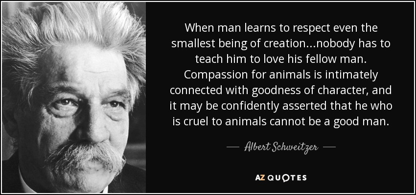 When man learns to respect even the smallest being of creation...nobody has to teach him to love his fellow man. Compassion for animals is intimately connected with goodness of character, and it may be confidently asserted that he who is cruel to animals cannot be a good man. - Albert Schweitzer