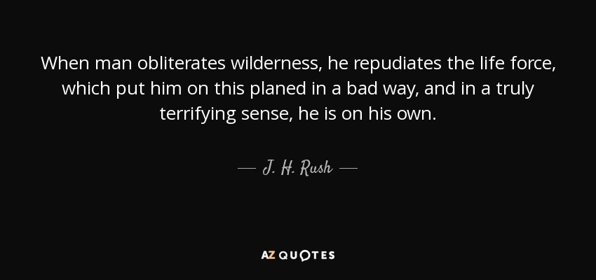 When man obliterates wilderness, he repudiates the life force, which put him on this planed in a bad way, and in a truly terrifying sense, he is on his own. - J. H. Rush