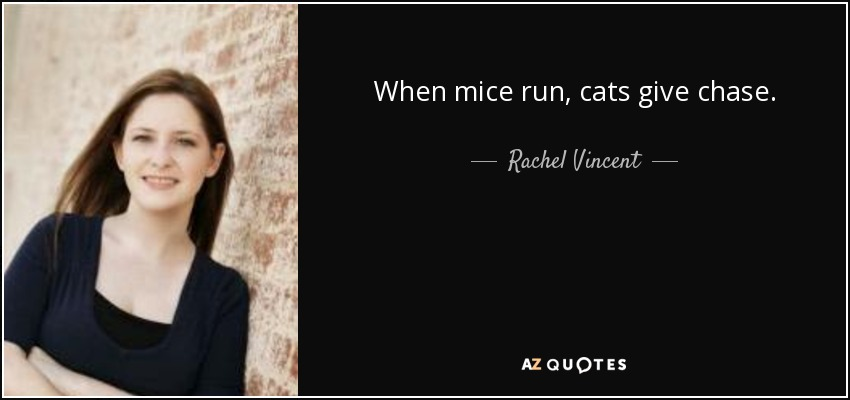 When mice run, cats give chase. - Rachel Vincent