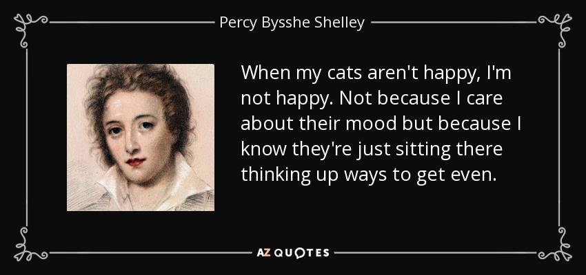 When my cats aren't happy, I'm not happy. Not because I care about their mood but because I know they're just sitting there thinking up ways to get even. - Percy Bysshe Shelley