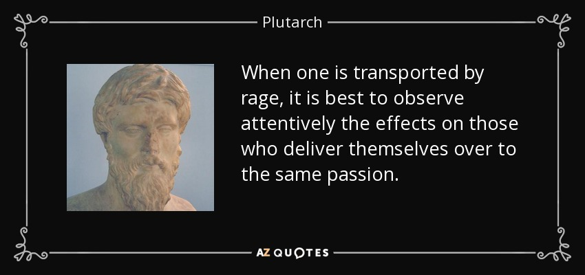 When one is transported by rage, it is best to observe attentively the effects on those who deliver themselves over to the same passion. - Plutarch