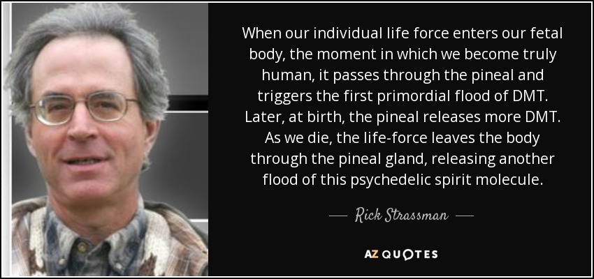 When our individual life force enters our fetal body, the moment in which we become truly human, it passes through the pineal and triggers the first primordial flood of DMT. Later, at birth, the pineal releases more DMT. As we die, the life-force leaves the body through the pineal gland, releasing another flood of this psychedelic spirit molecule. - Rick Strassman