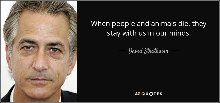 When people and animals die, they stay with us in our minds. - David Strathairn