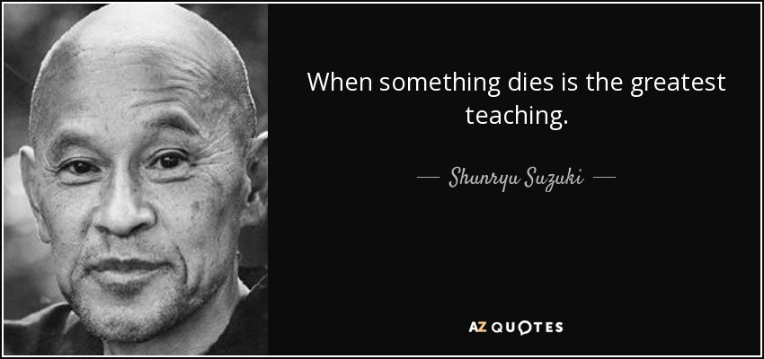 When something dies is the greatest teaching. - Shunryu Suzuki