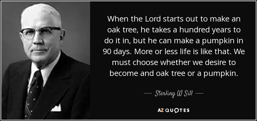 When the Lord starts out to make an oak tree, he takes a hundred years to do it in, but he can make a pumpkin in 90 days. More or less life is like that. We must choose whether we desire to become and oak tree or a pumpkin. - Sterling W Sill