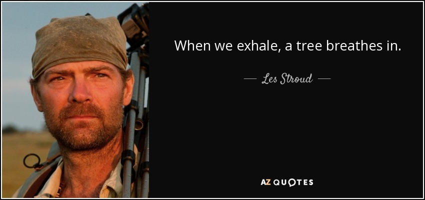 When we exhale, a tree breathes in. - Les Stroud