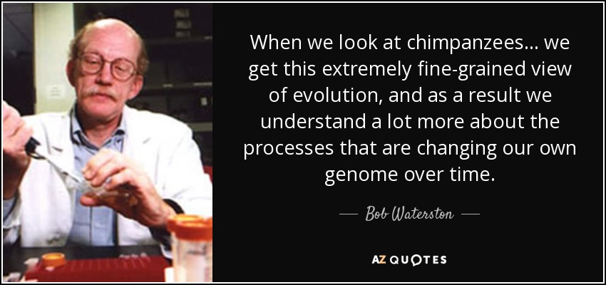 When we look at chimpanzees . . . we get this extremely fine-grained view of evolution, and as a result we understand a lot more about the processes that are changing our own genome over time. - Bob Waterston