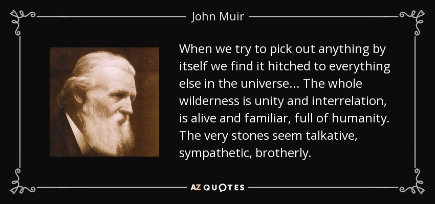 When we try to pick out anything by itself we find it hitched to everything else in the universe ... The whole wilderness is unity and interrelation, is alive and familiar, full of humanity. The very stones seem talkative, sympathetic, brotherly. - John Muir
