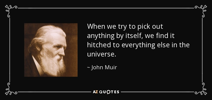 When we try to pick out anything by itself, we find it hitched to everything else in the universe. - John Muir