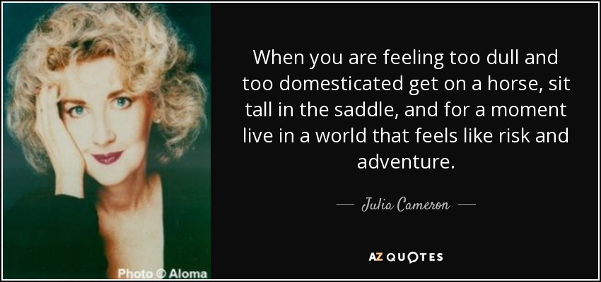 When you are feeling too dull and too domesticated get on a horse, sit tall in the saddle, and for a moment live in a world that feels like risk and adventure. - Julia Cameron