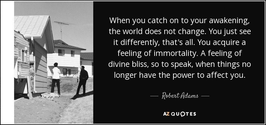 When you catch on to your awakening, the world does not change. You just see it differently, that's all. You acquire a feeling of immortality. A feeling of divine bliss, so to speak, when things no longer have the power to affect you. - Robert Adams