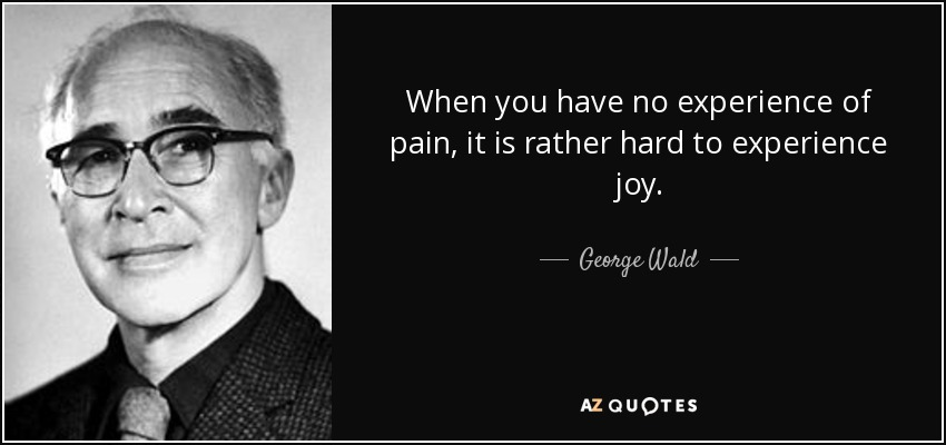 When you have no experience of pain, it is rather hard to experience joy. - George Wald