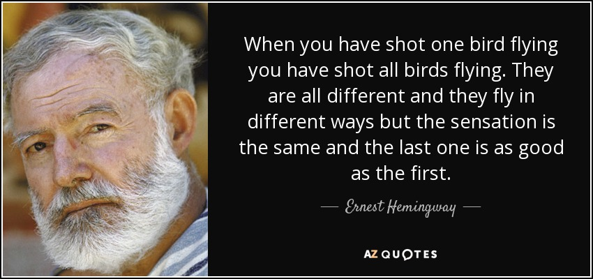 Top 25 Bird Flying Quotes A Z Quotes