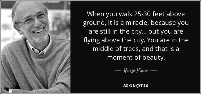 When you walk 25-30 feet above ground, it is a miracle, because you are still in the city ... but you are flying above the city. You are in the middle of trees, and that is a moment of beauty. - Renzo Piano
