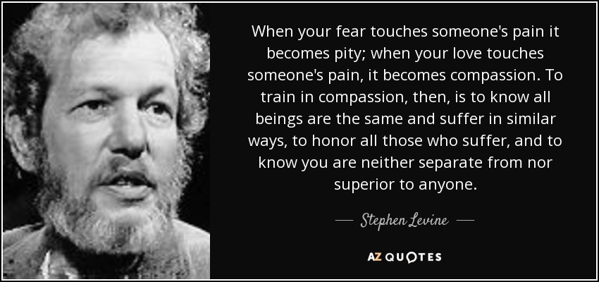 When your fear touches someone's pain it becomes pity; when your love touches someone's pain, it becomes compassion. To train in compassion, then, is to know all beings are the same and suffer in similar ways, to honor all those who suffer, and to know you are neither separate from nor superior to anyone. - Stephen Levine