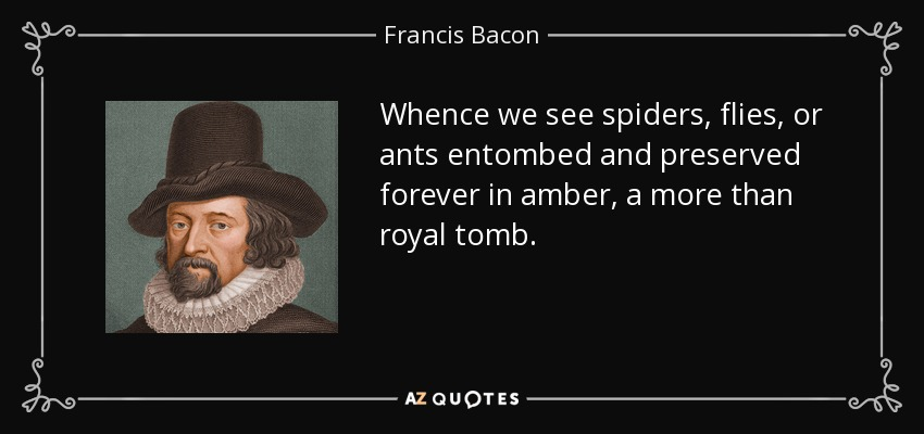 Whence we see spiders, flies, or ants entombed and preserved forever in amber, a more than royal tomb. - Francis Bacon