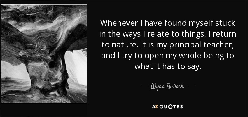 Whenever I have found myself stuck in the ways I relate to things, I return to nature. It is my principal teacher, and I try to open my whole being to what it has to say. - Wynn Bullock
