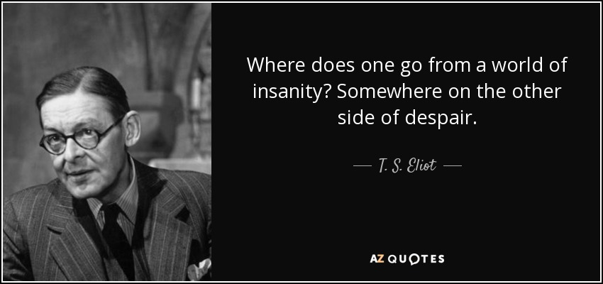 Where does one go from a world of insanity? Somewhere on the other side of despair. - T. S. Eliot