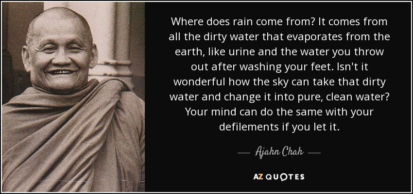 Where does rain come from? It comes from all the dirty water that evaporates from the earth, like urine and the water you throw out after washing your feet. Isn't it wonderful how the sky can take that dirty water and change it into pure, clean water? Your mind can do the same with your defilements if you let it. - Ajahn Chah