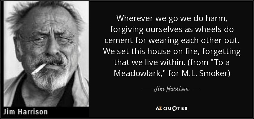 Wherever we go we do harm, forgiving ourselves as wheels do cement for wearing each other out. We set this house on fire, forgetting that we live within. (from