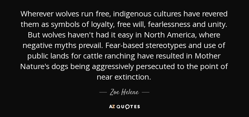 Wherever wolves run free, indigenous cultures have revered them as symbols of loyalty, free will, fearlessness and unity. But wolves haven't had it easy in North America, where negative myths prevail. Fear-based stereotypes and use of public lands for cattle ranching have resulted in Mother Nature's dogs being aggressively persecuted to the point of near extinction. - Zoe Helene