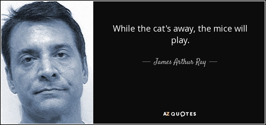 While the cat's away, the mice will play. - James Arthur Ray