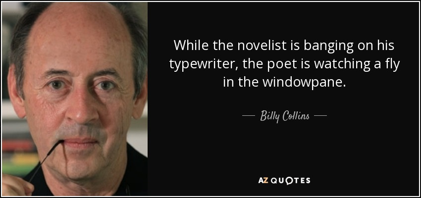 While the novelist is banging on his typewriter, the poet is watching a fly in the windowpane. - Billy Collins