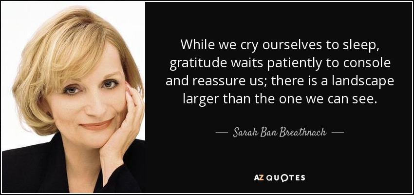 While we cry ourselves to sleep, gratitude waits patiently to console and reassure us; there is a landscape larger than the one we can see. - Sarah Ban Breathnach