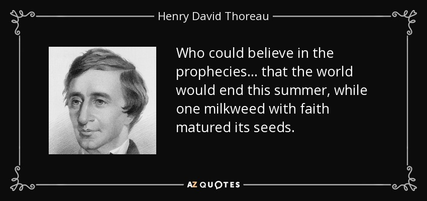 Who could believe in the prophecies ... that the world would end this summer, while one milkweed with faith matured its seeds. - Henry David Thoreau