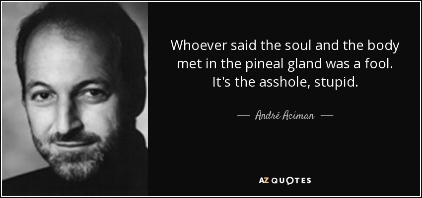 Whoever said the soul and the body met in the pineal gland was a fool. It's the asshole, stupid. - André Aciman