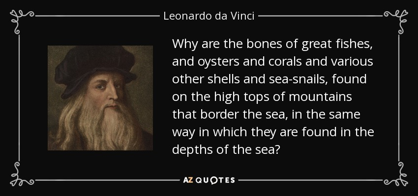 Why are the bones of great fishes, and oysters and corals and various other shells and sea-snails, found on the high tops of mountains that border the sea, in the same way in which they are found in the depths of the sea? - Leonardo da Vinci