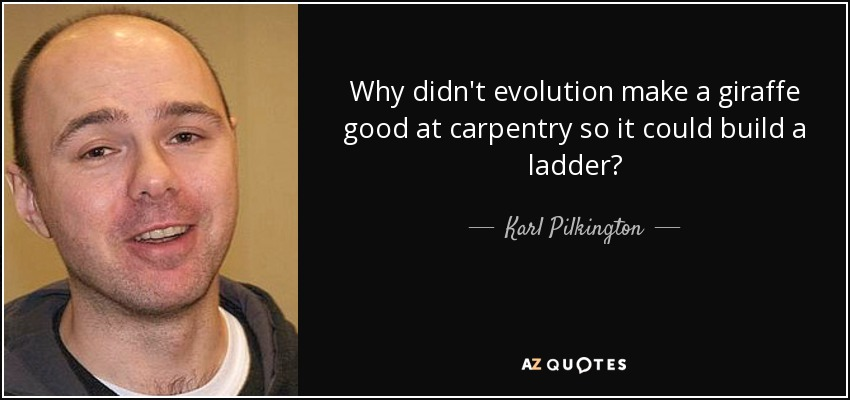 Why didn't evolution make a giraffe good at carpentry so it could build a ladder? - Karl Pilkington