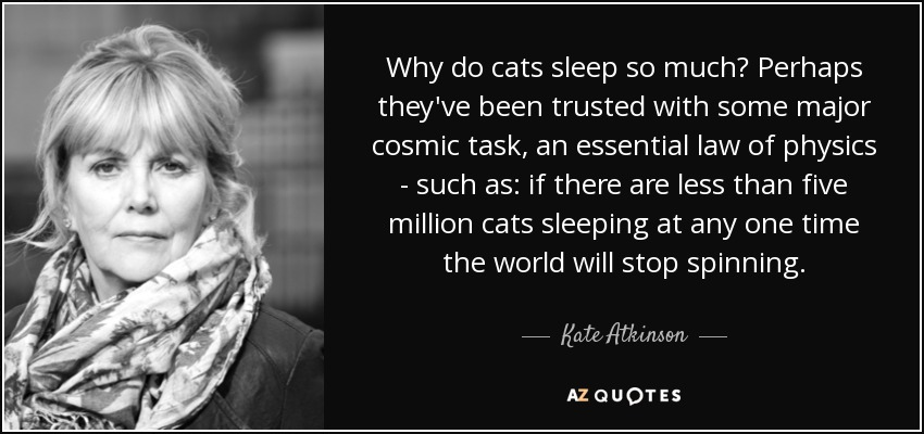 Why do cats sleep so much? Perhaps they've been trusted with some major cosmic task, an essential law of physics - such as: if there are less than five million cats sleeping at any one time the world will stop spinning. - Kate Atkinson
