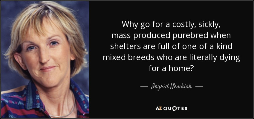 Why go for a costly, sickly, mass-produced purebred when shelters are full of one-of-a-kind mixed breeds who are literally dying for a home? - Ingrid Newkirk