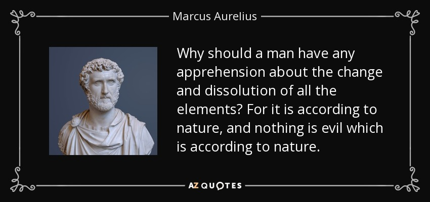 Why should a man have any apprehension about the change and dissolution of all the elements? For it is according to nature, and nothing is evil which is according to nature. - Marcus Aurelius