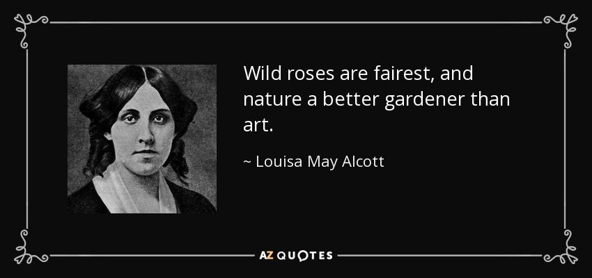 Wild roses are fairest, and nature a better gardener than art. - Louisa May Alcott
