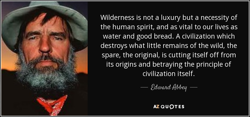 Wilderness is not a luxury but a necessity of the human spirit, and as vital to our lives as water and good bread. A civilization which destroys what little remains of the wild, the spare, the original, is cutting itself off from its origins and betraying the principle of civilization itself. - Edward Abbey