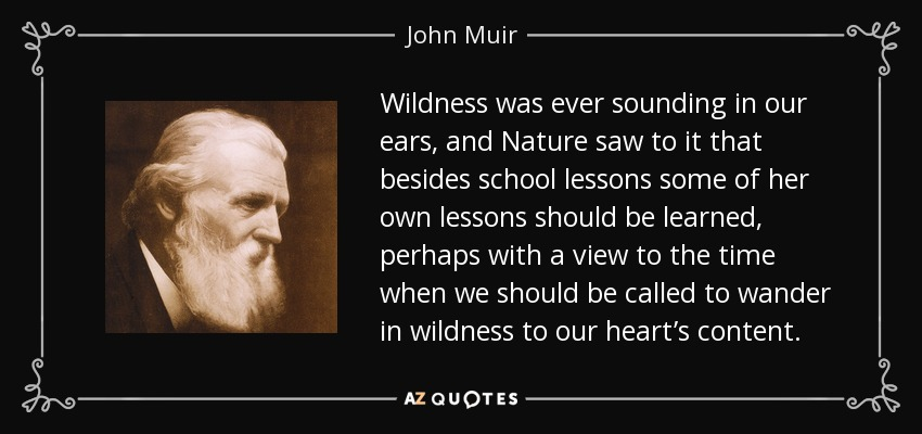 Wildness was ever sounding in our ears, and Nature saw to it that besides school lessons some of her own lessons should be learned, perhaps with a view to the time when we should be called to wander in wildness to our heart's content. - John Muir