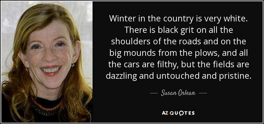 Winter in the country is very white. There is black grit on all the shoulders of the roads and on the big mounds from the plows, and all the cars are filthy, but the fields are dazzling and untouched and pristine. - Susan Orlean