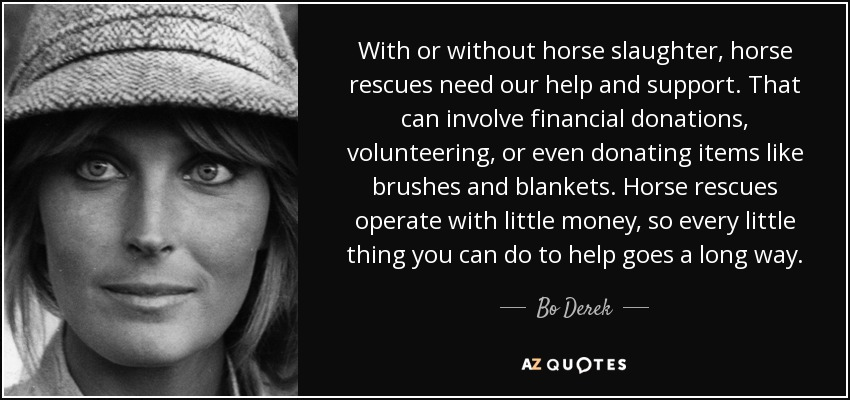 With or without horse slaughter, horse rescues need our help and support. That can involve financial donations, volunteering, or even donating items like brushes and blankets. Horse rescues operate with little money, so every little thing you can do to help goes a long way. - Bo Derek