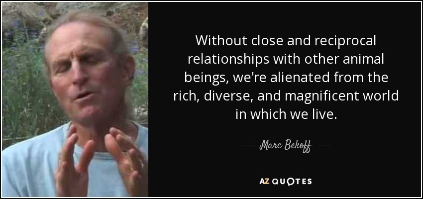 Without close and reciprocal relationships with other animal beings, we're alienated from the rich, diverse, and magnificent world in which we live. - Marc Bekoff